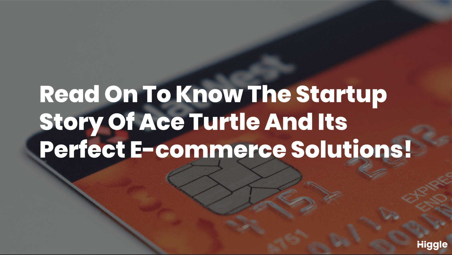 startup story of ace turtle